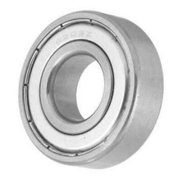 Sealed Axial Deep Groove Ball Bearing SKF 6203 6203zz 62032RS 6203z 6203RS
