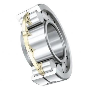 SKF NSK NTN Koyo NACHI Timken Bearing with P5 Quality (61916 16016 6016 6216 6316 6417 61817 61917 16017 6017 6217 6317 6417 61818 61918 16018 Zz 2RS Rz Open)