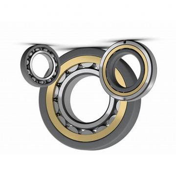 NSK brand number 6204DU deep groove ball bearings for internal combustion engines